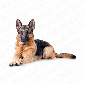 GERMAN SHEPHERD LYING PAWS CROSSED ANIMAL T-SHIRT IRON-ON TRANSFER DECAL #ADGS2