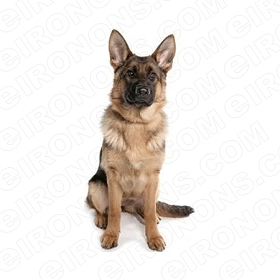 GERMAN SHEPHERD SITTING FRONT VIEW ANIMAL T-SHIRT IRON-ON TRANSFER DECAL #ADGS5