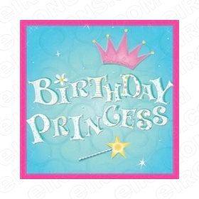 BIRTHDAY PRINCESS 2 T-SHIRT IRON-ON TRANSFER DECAL #BP2