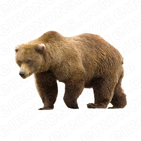 BROWN BEAR WALKING ANIMAL BEAR T-SHIRT IRON-ON TRANSFER DECAL #ABB5
