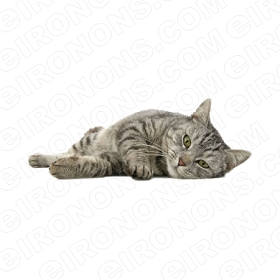 CAT LAYING ON SIDE RELAXED ANIMAL T-SHIRT IRON-ON TRANSFER DECAL #AC1