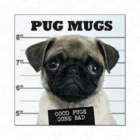 PUG MUGS ANIMAL T-SHIRT IRON-ON TRANSFER DECAL #APM1