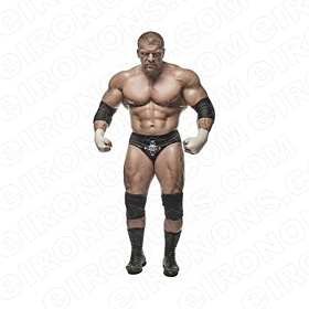 WWE TRIPLE H FRONT VIEW SPORTS WRESTLING T-SHIRT IRON-ON TRANSFER DECAL #SWWETH1
