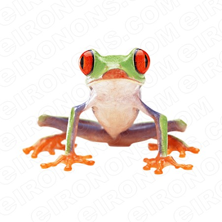 RED EYED TREE FROG FRONT VIEW ANIMAL T-SHIRT IRON-ON TRANSFER DECAL #AF3