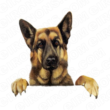 GERMAN SHEPHERD PEEKING ANIMAL T-SHIRT IRON-ON TRANSFER DECAL #ADGS3