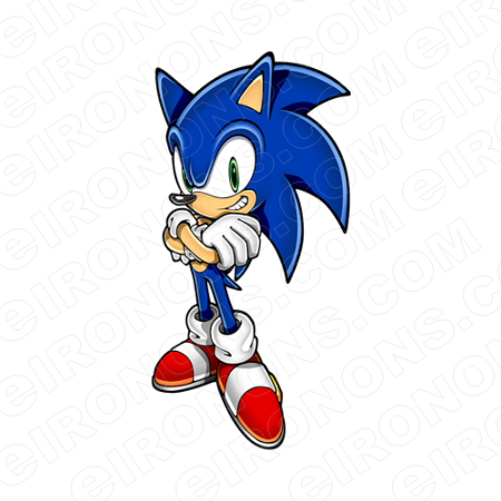 SONIC THE HEDGEHOG STANDING VIDEO GAME T-SHIRT IRON-ON TRANSFER DECAL #VSTHH8